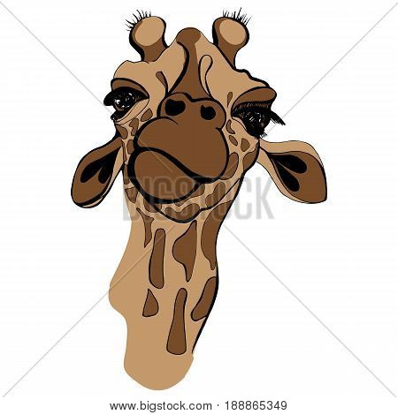 Giraffe illustration isolated on white background. T-shirt print with animals