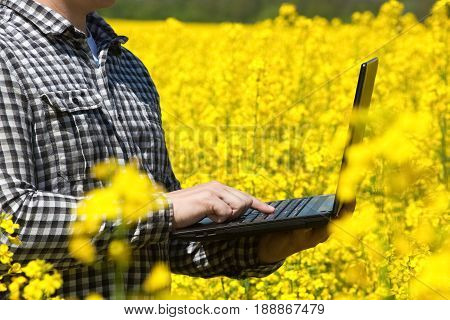 Male Farmer - Businessman Holding A Laptop On A Field Of Yellow Blooming Canola, Close-up. Agricultu