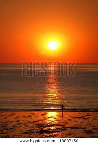 Girl looking at the sunset