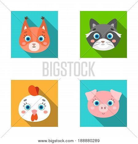 Protein, raccoon, chicken, pig. Animal's muzzle set collection icons in flat style vector symbol stock illustration .