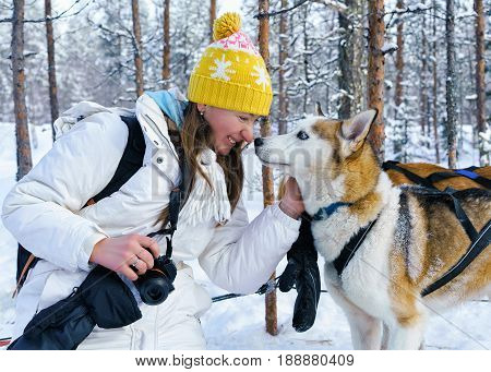 Girl And Husky Dog At Lapland Finland