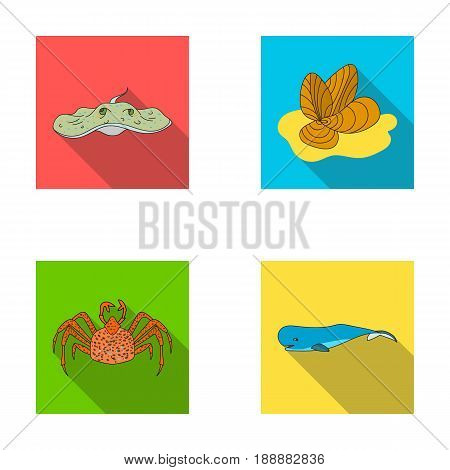 Electric ramp, mussels, crab, sperm whale.Sea animals set collection icons in flat style vector symbol stock illustration .