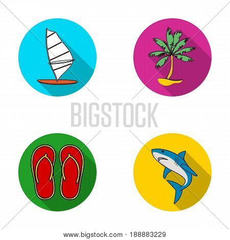Board with a sail, a palm tree on the shore, slippers, a white shark. Surfing set collection icons in flat style vector symbol stock illustration .