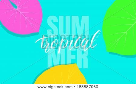 Tropical background with colorful exotic leaves for sale, promotion, discount, web