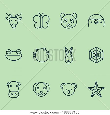 Nature Icons Set. Collection Of Bunny, Puppy, Kine And Other Elements. Also Includes Symbols Such As Koala, Marsupial, Spider.
