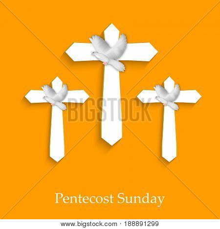 illustration of pigeon and cross with Pentecost Sunday text