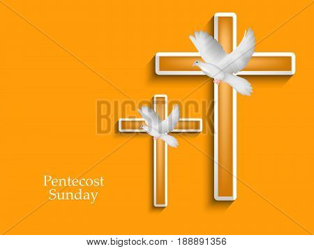 illustration of pigeon and cross with Pentecost Sunday text on yellow background