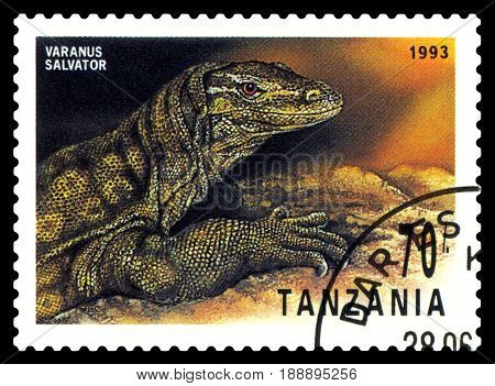 STAVROPOL RUSSIA - May 21 2017: a stamp printed by Tanzania shows Striped monitor (Varanus Salvator) series Reptile circa 1993