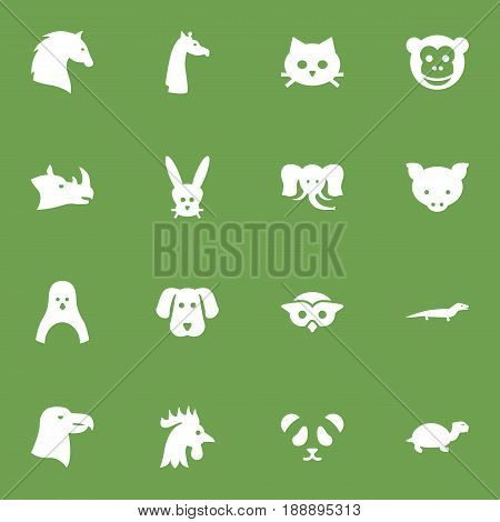 Set Of 16 Zoo Icons Set.Collection Of Ape, Camelopard, Steed And Other Elements.