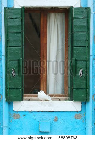 Retro window with open green wooden blinds