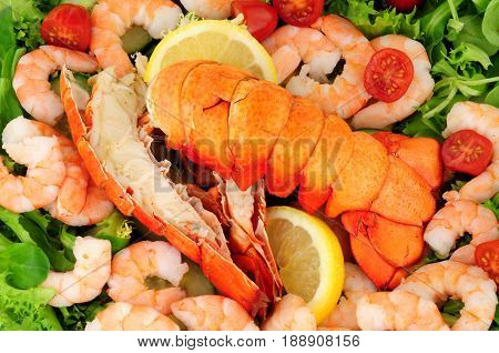 Cooked lobster tails with a fresh salad background