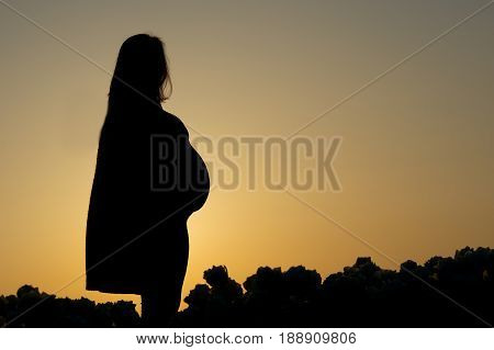 The stunning silhouette of a pregnant woman as she stares off into the distance at twilight.