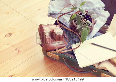Retro suitcase with film camera ficus in the pot and denim clothing / travel with your favorite things