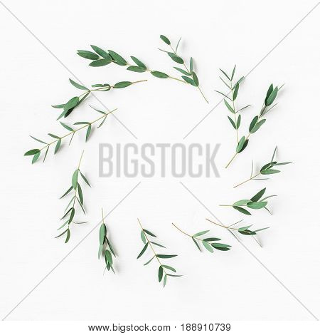 Eucalyptus on white background. Wreath made of eucalyptus branches. Flat lay top view