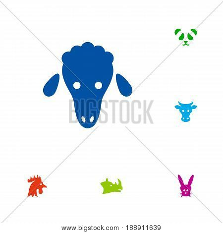 Set Of 6 Alive Icons Set.Collection Of Rhinoceros, Bear, Lamb And Other Elements.