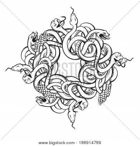 Vector hand drawn illustration with bunch of angry snakes. Artwork of rattlesnake in realistic line style. Template for postcard banner poster print for t-shirt