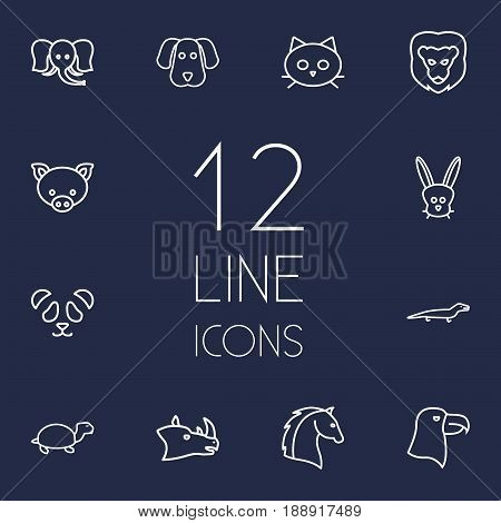 Set Of 12 Zoo Outline Icons Set.Collection Of Rabbit, Turtle, Horse And Other Elements.