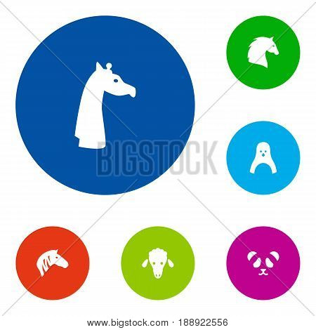 Set Of 6 Zoo Icons Set.Collection Of Horse, Steed, Lamb And Other Elements.