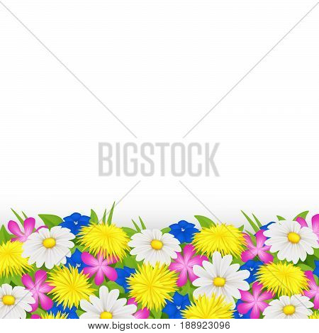 Wildflowers isolated on white background. Vector eps 10.