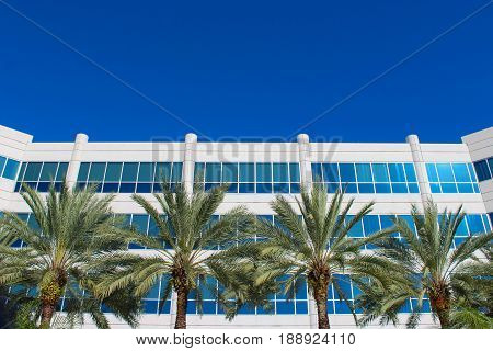 Symmetrical building with palm trees erected in front. The large windows reflect the bright, blue sky.