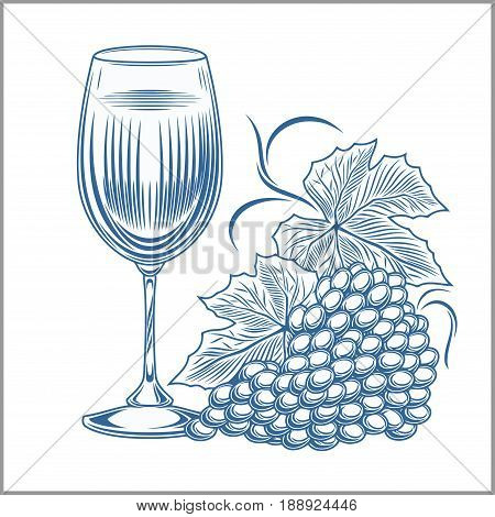 wine and grapes vector illustration isolated on white