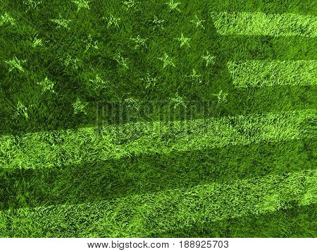 Green grass lawn in american flag style