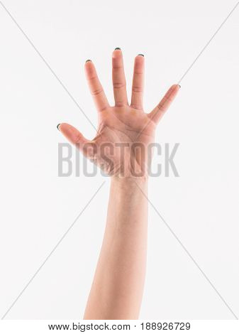 Woman hand showing the five fingers isolated on a white background