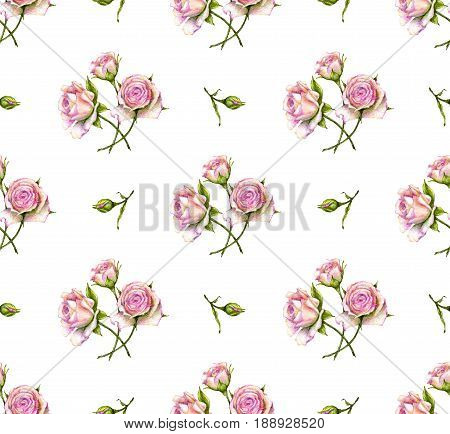 Seamless flowers pattern. Hand painted raster bitmap image for design, wedding, greeting card, wallpaper, background, decor. Flowers ornament. Roses with buds and leaves on white background