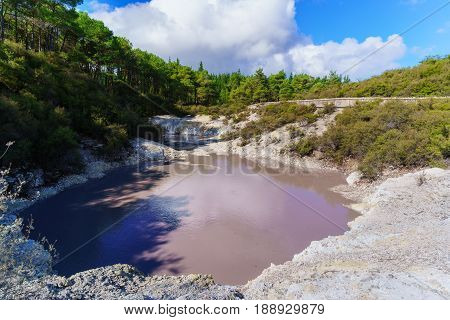 Devils Ink Pot crater pool at Wai-O-Tapu geothermal area Rotorua North Island of New Zealand