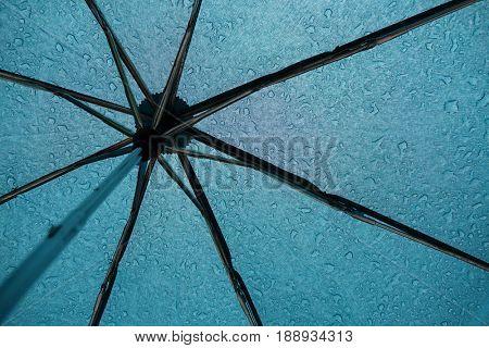 Raindrops on the umbrella