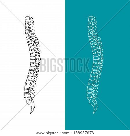 Vector illustration white spine diagnostic symbol, design, sign. Diagnostic center. Flat and solid color style design