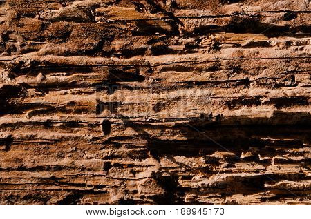 Loose texture of a rotten tree vertical background shade of orange and golden color