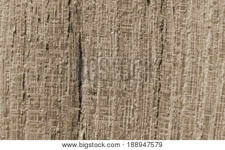 Line wood texture brown with neutral tinge color