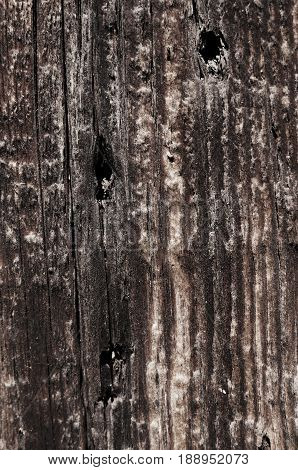 Board with a wooden texture with holes from the nails of a black neutral color. Vertical lines