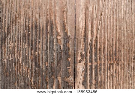 Texture of charred wood vertical lines of textures beautiful background