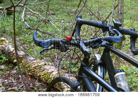 two bikes in the spring woods walking through the woods on bikes