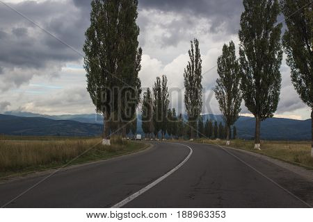 beautiful landscape. countryside road to mountains with poplar trees on sides. rainy day with gray sky full of clouds. horizontal shot