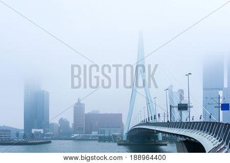 Erasmus bridge in Rotterdam, Netherlands