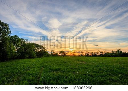 Scene Of Beautiful Sunset At Summer Field With Willows And Grass.