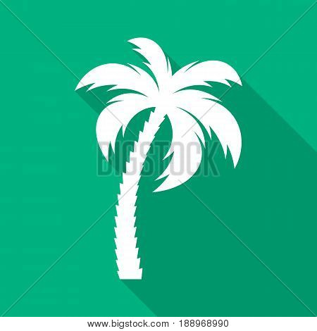 White vector palm tree flat icon green background