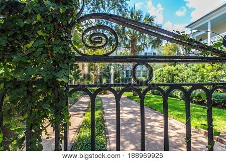 A wrought iron gate in front of a courtyard in Charleston South Carolina.