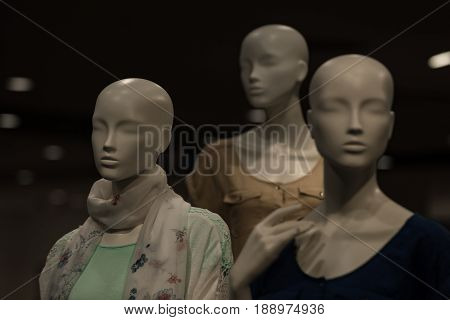 Dummy With Human Face Imitating People Conversation, Fashion