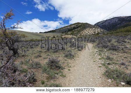 Mt. Borah trailhead in Lost River Mountains. Borah is Idaho's tallest peak at  (at 12,662 ft (3,859 m).