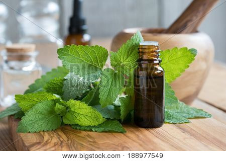 A Bottle Of Melissa Essential Oil With Fresh Melissa Leaves