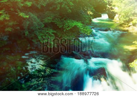 mountain river in the vintgar gorge near bled, slovenia