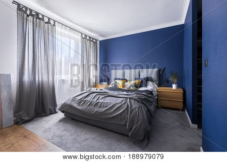 Cobalt Blue Bedroom With Bed