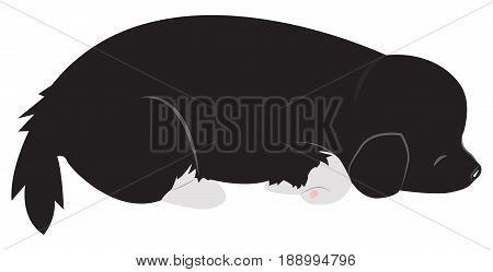 The cute black puppy is sleep. Vector cartoon illustration