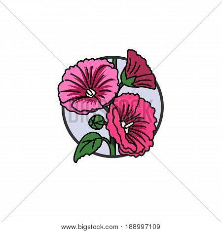 Illustration of pink hollihock with leaf and flowers on stalk