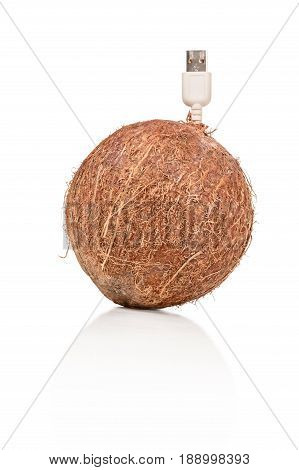 Conceptual photo - big round coconut with usb plug isolated on white background