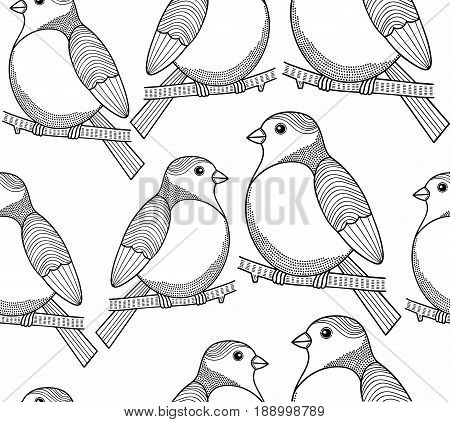 Seamless black and white graphic with cute birds. Vector pattern.